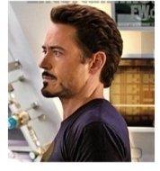 The Avengers Captain America (Chris Evans) and Iron Man (Robert Downey, Jr.)