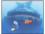 """Finding Nemo"" Movie Still: Blue Whale, Dory, and Marlin"