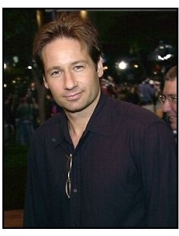 David Duchovny at the Bandits premiere