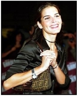 Angie Harmon at the Barbra Streisand Concert
