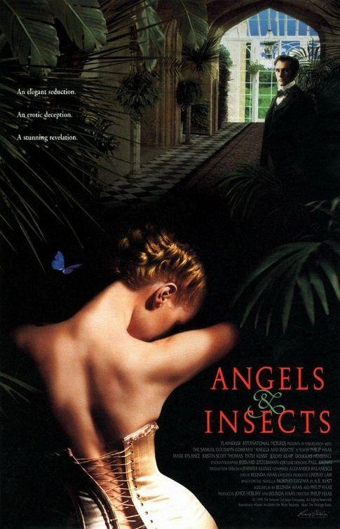 Angels & Insects