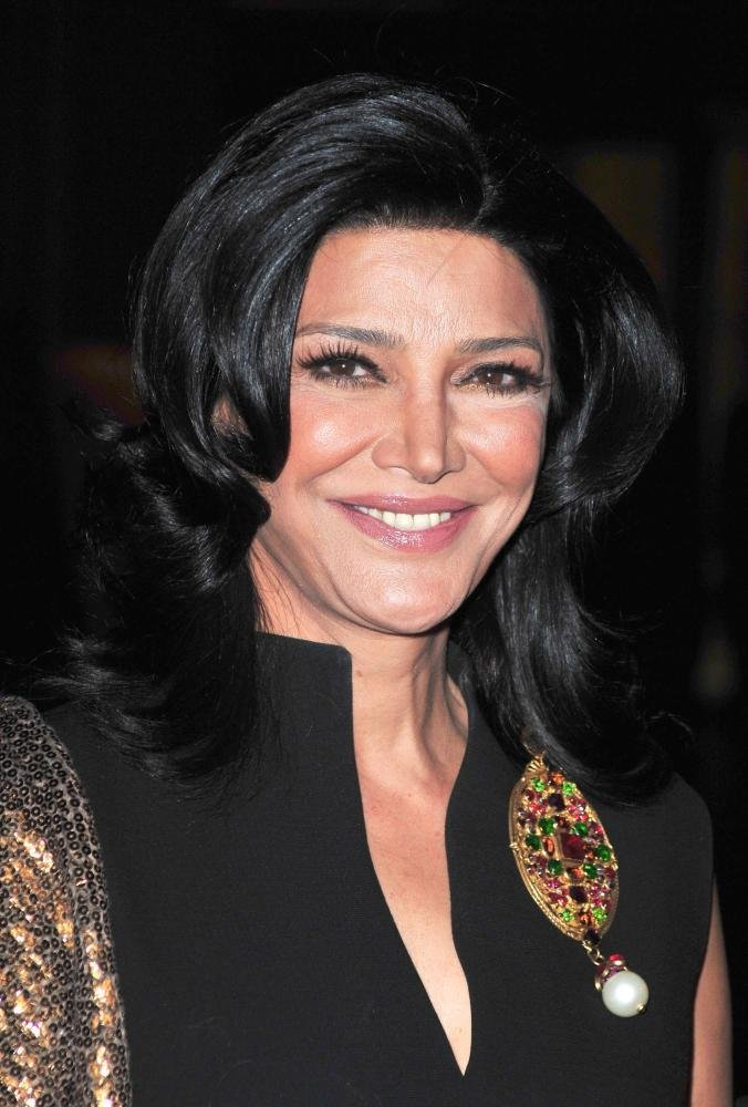 Download this Shohreh Aghdashloo Had Wait Another Years Before She Resumed Her picture
